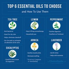 The top 6 essential oils that you should be using right now.