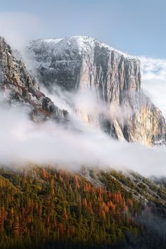A mid winter morning in Yosemite Valley as morning light , fog and mist enshroud the iconic rock formation known as El Capitan.