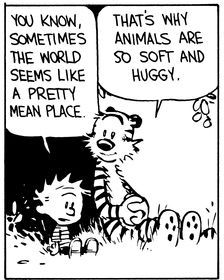 Calvin and Hobbes (DA) - You know, sometimes the world seems like a pretty mean place. | That's why animals are so soft and huggy.