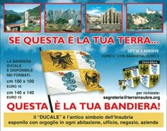 Flags of Insubria