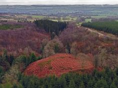 Aerial Surveys Reveal Possible Fort of Scottish Patriot William Wallace Battle Of Stirling Bridge, Chen, English Army, Well Images, William Wallace, Aerial Footage, Timber Buildings, Scottish Castles, England And Scotland