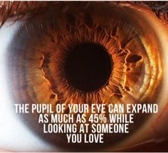 Did you know? The pupil of your eye can expand as much as 45% while looking at someone you love!
