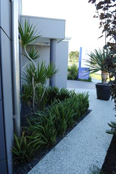 Backyard Exposed Aggregate Pathways Landscaping #perthdesignconstruct