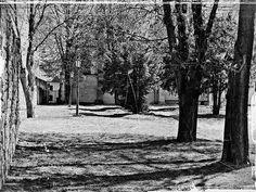 photo urban   free download photobank of black and white photos Black White Photos, Black And White, Free Black, Public Domain, Urban, Black N White, Black White