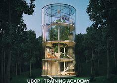 Уникальный дом из стекла построят в лесу вокруг дерева