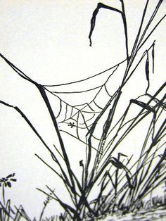 1953 SPIDER WEB & SEA GRASS