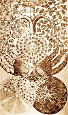 Tree of dark and light from Valentine Weigel Studium Universale, 1695. / Sacred Geometry <3
