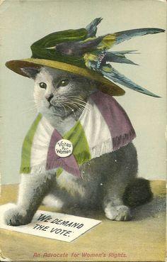 Vintage Suffragette Campaign