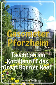 Great Barrier Reef, Reisen In Europa, In The Heights, Places To Visit, 360 Grad, Fair Grounds, The Incredibles, Travel, Germany Travel