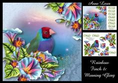 Rainbow Finch Morning Glory on Craftsuprint designed by Anne Lever - This lovely mini kit makes a large square topper (approx 8x8) with decoupage and a greeting. It has ten greetings. The greetings are mum, mom, aunt, best wishes, with love, for you, daughter, sister, niece, and my friend.  - Now available for download!
