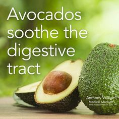 Avocados soothe the digestive tract Learn more about the healing powers of avocado in Life-Changing Foods, link in profile