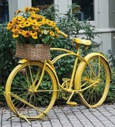 Spray paint a old bicycle and use the basket as a planter; perfect for a cottage style garden.