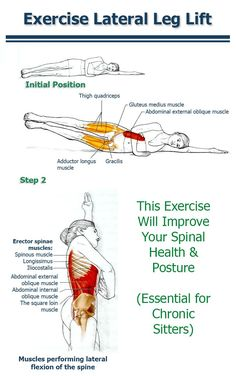 Lateral Leg Lifts - Will Improve Your Spinal Health & Posture (Essential for Chronic Sitters) - This is a GREAT site! - The Health Science Journal Fitness Workouts, Fitness Hacks, Forma Fitness, Autogenic Training, Gluteus Medius, Gewichtsverlust Motivation, Coconut Health Benefits, Leg Lifts, Health Tips
