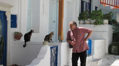 Cat Whisperer, Mykonos Greece 6/2012