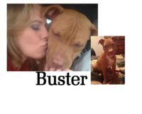 """Kathleen Seaman, owner of Buster, a pit bull. It got loose, and was reported to local police. When they went looking, the pit charged them and was shot to death. Seaman, who arrived in time to tell the cops her pit got loose often, is now screaming for """"justice"""" for her loose, aggressive pit bull. (Oct 2014, MI) http://thenewsherald.com/articles/2014/10/07/news/doc54344d614dce9881660118.txt"""