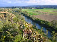Addo, Eastern Cape  https://www.pinterest.com/mausby/south-africa-home-including-neighbours/
