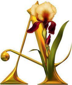 Alfabeto de orquídeas.