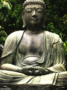 I would love a Buddah statue which would be on a fountain to hold Koi fish.