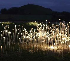 These fiber optic mushrooms give an interesting light formation that reminds me of the stories of the fair folk