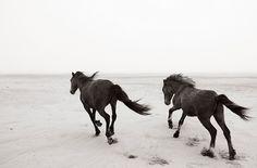 Meet Photographer Drew Doggett