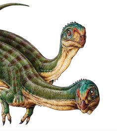 A 7-year-old boy discovered <i>Chilesaurus diegosuarezi</i> in southern Chile in 2010 during a geology expedition with his parents. The Chilean scientists reached out to paleontologists in Argentina, and together they found dozens of C. diegosuarezi bones, including four complete specimens.<br />