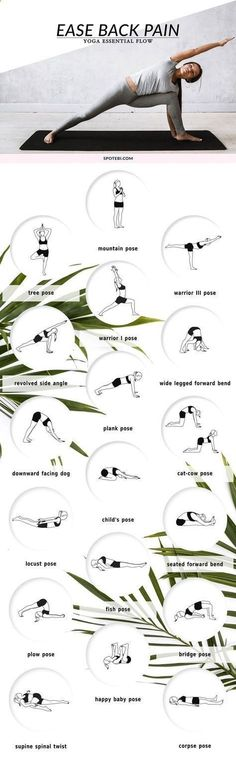 Tips For Exercise With Your Dog Yoga as a practice teaches us good posture through grounding poses like mountain pose, tree pose or downward facing dog pose. These grounding poses when combined with twists help us maintain a flexible yet strong spine and