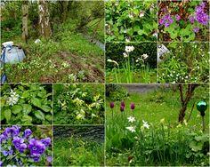 mano's frühlingsgarten