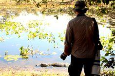 Segura coração!  Paço da Ema, Pantanal, Mato Grosso