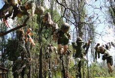 """Martes, el veinte y dos de junio, espero visitar Xochimilco a las once de la mañana. Xochimilco tiene un lago muy grande, y hay mucha para ver. Austin y yo iremos a la Isla de Muñecas, porque nos encantan historias de fantasmas. La isla tiene millones de muñecas en los árboles, entonces, tendremos miedos… Pero será divertido…¡Espero ver una fantasma! FAVOR DE CONTINUAR CON EL """"PIN"""" QUE VIENE"""
