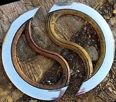 Chakram from India. It is a throwing weapon that can be split in half or be used a full circle.