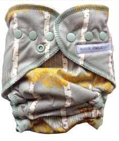 The Professor's Blog: Forage - Cloth Diapers for Baby
