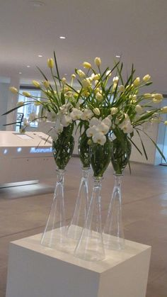 Orchids and tulips. hermitage amsterdam