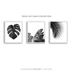 Digital Download Art// Palm leaf (This print also comes in a color version)  Welcome to SCANDINAVIAN WALLS!  50% OFF! BUY 2 GET 4 - Select 4 prints in your cart - pay only for 2! - Use code: FREEPRINTS  ↓ See info about and sizes included in this print, by clicking +More  Print out the art on your printer at home, or use a local or online printshop, and decorate your walls in the minimalistic style Scandinavia is known for. It is a unique, beautiful, easy, quick and budget friendly ...