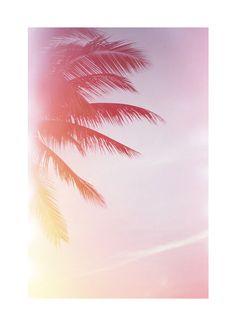 Summertime. For great summer styles, shop www.crocs.com