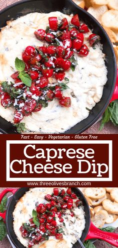 Caprese Cheese Dip is a fast and simple vegetarian Italian appetizer recipe. Three cheeses (mozzarella, cream cheese, Parmesan) are melted with seasonings and topped with fresh tomatoes, fresh basil, and balsamic vinegar. Make Ahead Appetizers, Italian Appetizers, Cold Appetizers, Vegetarian Appetizers, Appetizer Recipes, Best Dip Recipes, Veggie Recipes Healthy, No Dairy Recipes, Gf Recipes