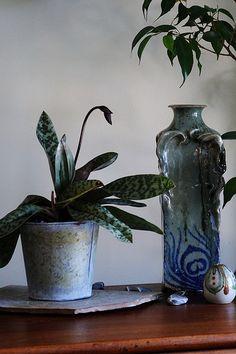 Art nouveau vase by Drew Milligan