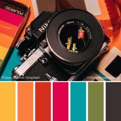 Color Palettes for Design Inspiration: July 2019 — Mill Creek Creative Create Color Palette, Colour Pallete, Colour Schemes, Coastal Color Palettes, Coastal Colors, Baby Room Design, Creative Colour, Color Inspiration, Brand Inspiration