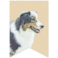 #Australian Shepherd Bunting Flags - #australian #shepherd #puppy #shepherds #dog #dogs #pet #pets #cute #australianshepherd