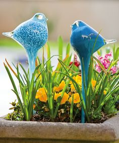 Look what I found on #zulily! Blue Bird Water Globes Set by Evergreen #zulilyfinds