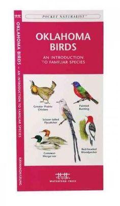 Oklahoma Birds: A Folding Pocket Guide to Familiar Species (Pocket Naturalist Guide)