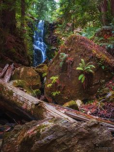 Berry Creek Falls, Big Basin Redwoods State Park by James Stanton - Long hike through old-growth redwoods to shimmering waterfalls is a Bay Area favorite. State Parks, Beautiful World, Beautiful Places, Big Basin Redwoods, Go Camping, Vacation Destinations, Places To See, Bay Area, Berry