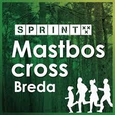 Marathonkampioen Schroër wint Mastboscross