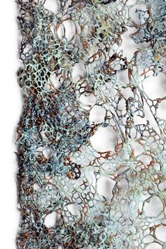 Lesley Richmond Lace cloth series,