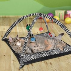 Cats can sometimes be a bit moody and are hard to please and entertain. Treat your cat with a unique new toy with this Cat Bed with Dangling Toys!Cats are naturally playful but they can also be very l