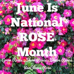 June is National Rose Month - Grow Roses. Show Roses. Share Roses. #RoseChat