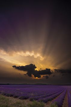 Sunset, Provence, France