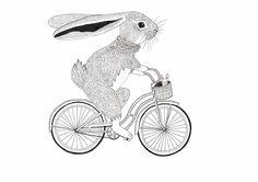 rabbit illustrations vintage -