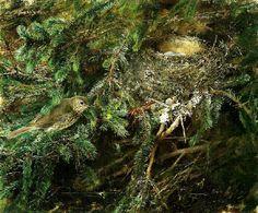 Bruno Liljefors, Thrush with nest