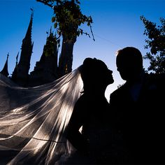 Cinderella's Castle and your true love - what more could you want?
