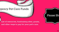 Help paying for your pet's care